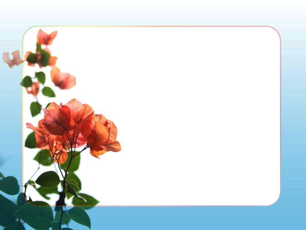 Background là gì? 1001 các hình Background đẹp cho powerpoint 2019 27