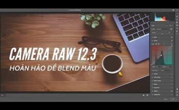 Camera Raw 12.3 Full - Plugin cho Photoshop Mới Nhất 2021